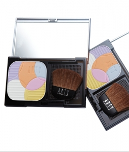 ARTY PROFESSIONAL TOUCH UP POWDER